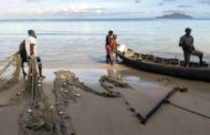 Sustainable fishing staying afloat in developed world, sinking in poorer regions                         #HVWFishing